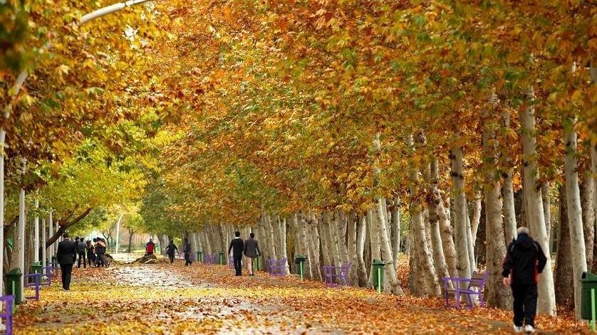 باغ بزرگ وکیل آباد