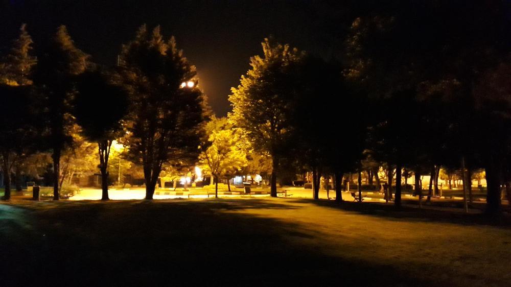 پارک قائم